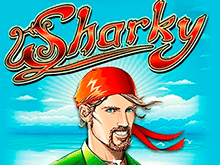 На зеркале автоматы Sharky