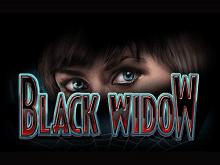 Черная Вдова - онлайн-симулятор для азартной игры на реальные деньги от IGT Slots