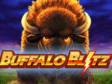 Игровой автомат Buffalo Blitz